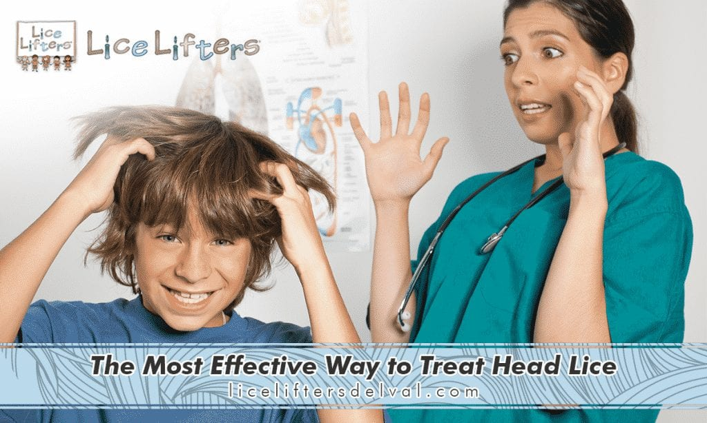 Lice Lifters Of Chadds Ford The Most Effective Way To Treat Head Lice