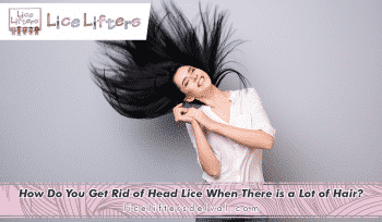 CHADDSFORD - How Do You Het Rid of Head Lice When There is a Lot of Hair