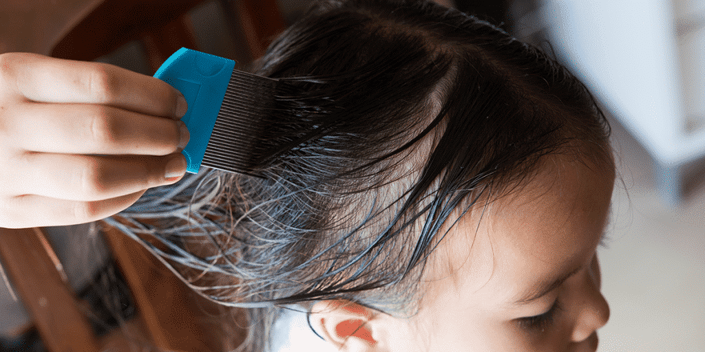 Best Lice Removal Services In Delaware County 2019